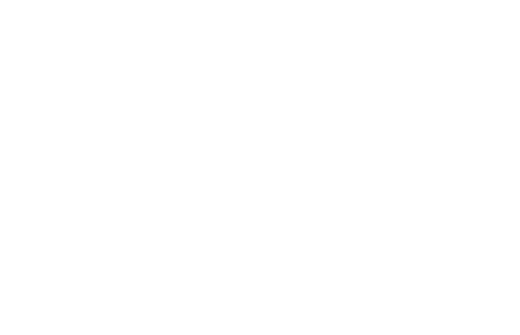 The Falls Round Rock Apartments logo